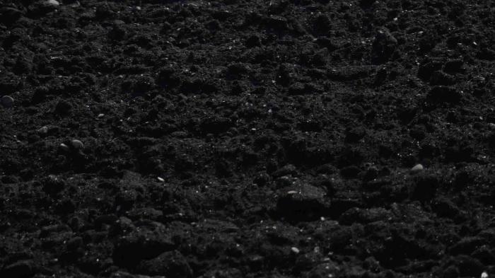 Black-Loam