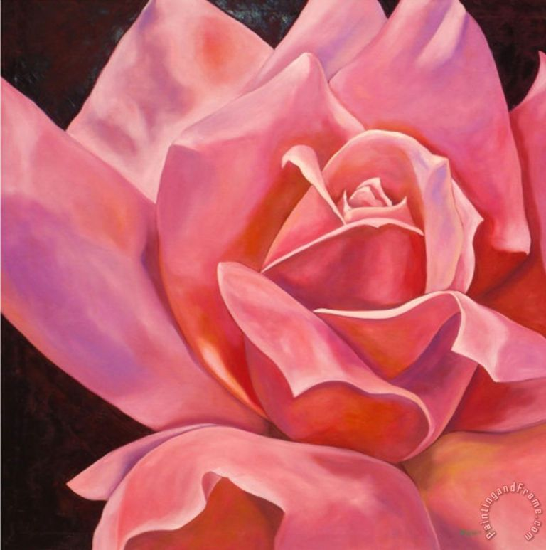 Pink Rose Painting by hyunah kim; Pink Rose Art Print for sale