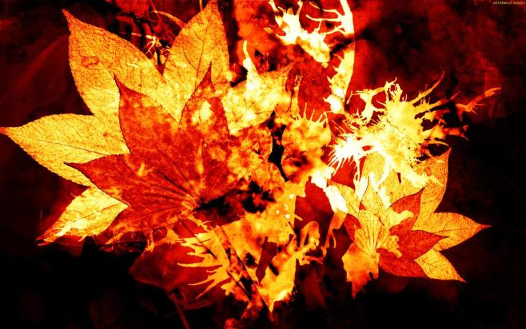 burning_leaves_by_starwaltdesign_d49jozi-fullview